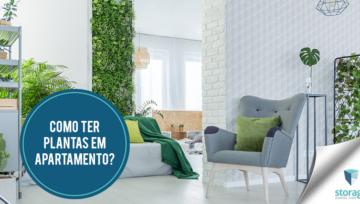 Como ter plantas em apartamento?